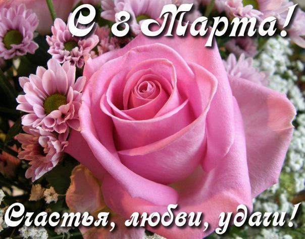Роза к 8 марта, С 8 марта