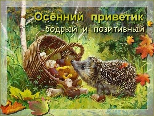 Осенний приветик добрый и позитивный, Осень