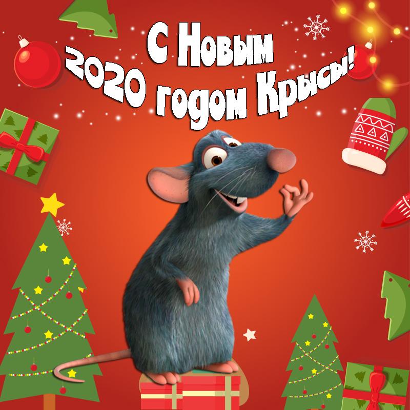 клев какой открытки с новым годом крысы любимая